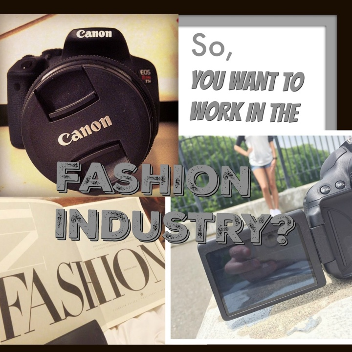 So You Want To Work In The FashionIndustry?